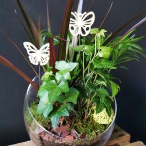 Trio de plantes verte (vert)