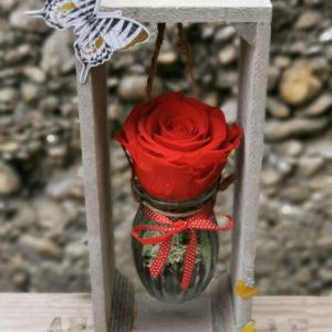 Rose éternelle suspendue (Rouge)