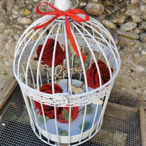Amour en cage