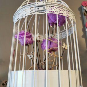 Cage de roses