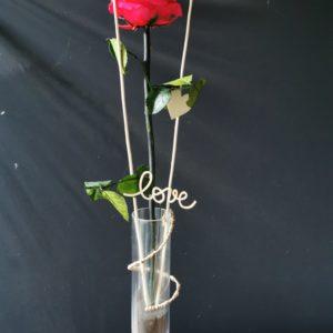 Rose éternelle Framboise dans soliflore